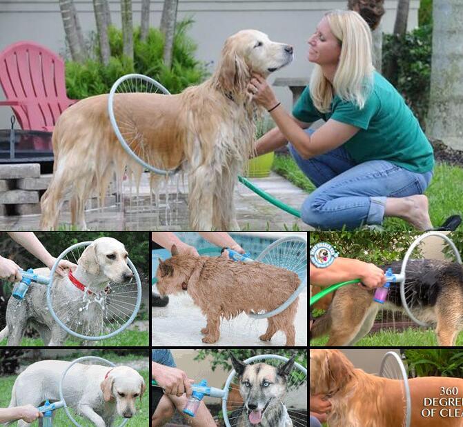 آرایشگاه حیوانات خانگی  مرکز شستشوی سگ