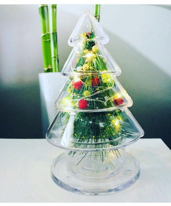 درختچه کاج کریسمس